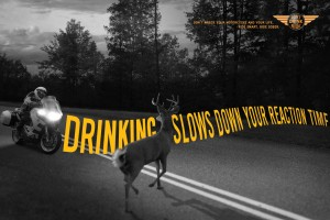 Deer in Road Motorcycle Safety Promotion