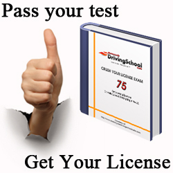 Crush Your License Exam